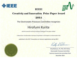 IEEE Creativity and Innovation Prize Paper Award 2014