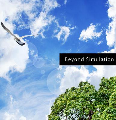 beyond simulation.JPG