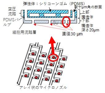 019_1 永井 図.jpg